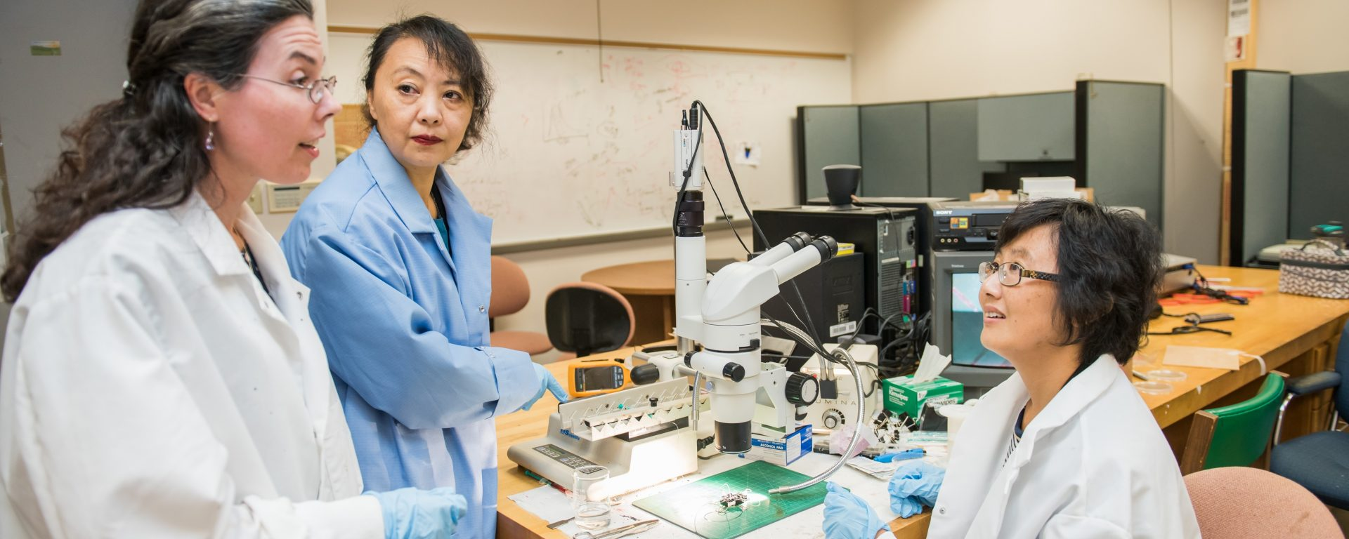 UMBC faculty awarded NSF grant to shrink tumors with heat and nanoparticles